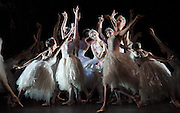 The Royal Ballet have launched their 2017/8 Programme today (5th April 2017) it includes a revival of Swan Lake which starts on 17th May 2018. <br />