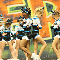 1061_SA Academy of Cheer Dance Synergy