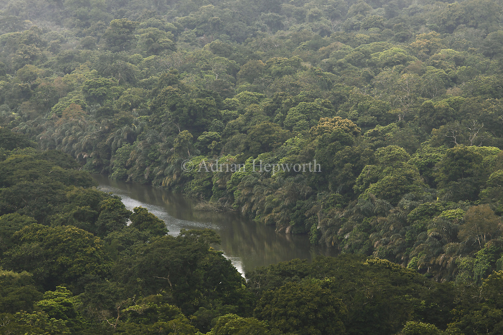 Natural canal in Caribbean lowland rainforest. View southwest from Cerro Tortuguero, Tortuguero National Park, Costa Rica. <br />