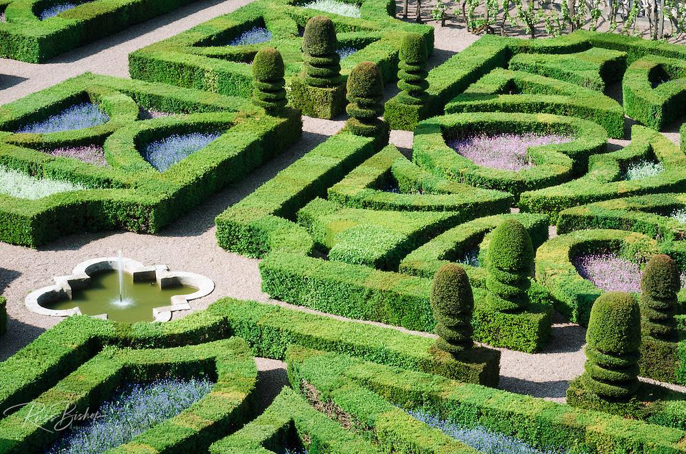 Garden detail, Chateau de Villandry, Villandry, Loire Valley, France