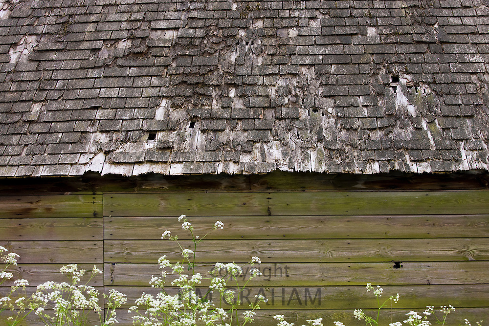 Oak shingles traditional roofing in Hatherop, The Cotswolds, Gloucestershire, UK