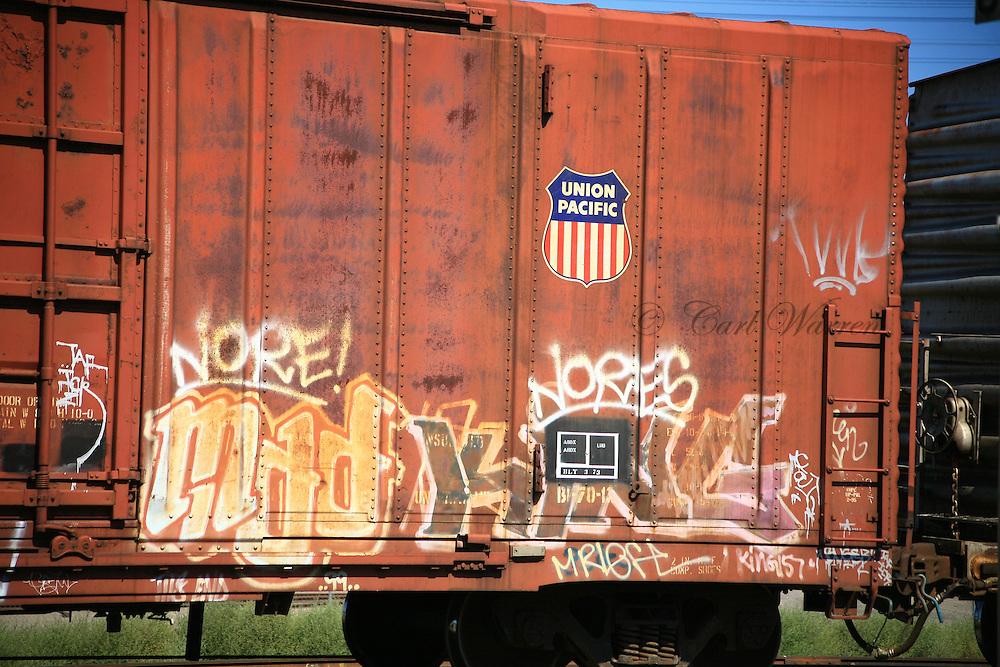 Train Graffiti in Oregon