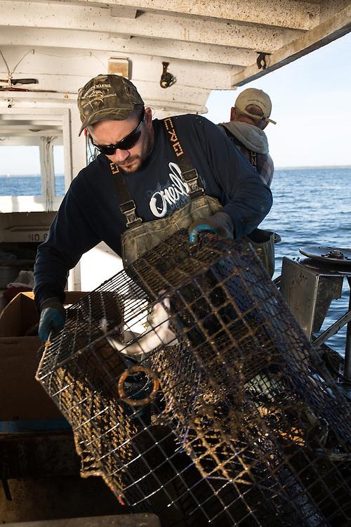 Ryan rRibb empties the crab trap | October 11, 2015