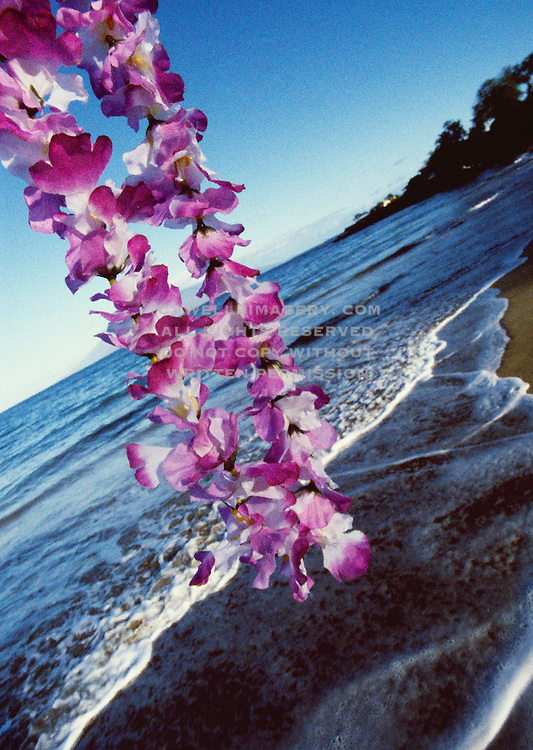 Image of Hawaiian lei overlooking beach in Maui, Hawaii, Hawaiian Islands