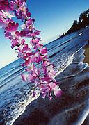 Image of Hawaiian lei overlooking beach in Maui, Hawaii, Hawaiian Islands