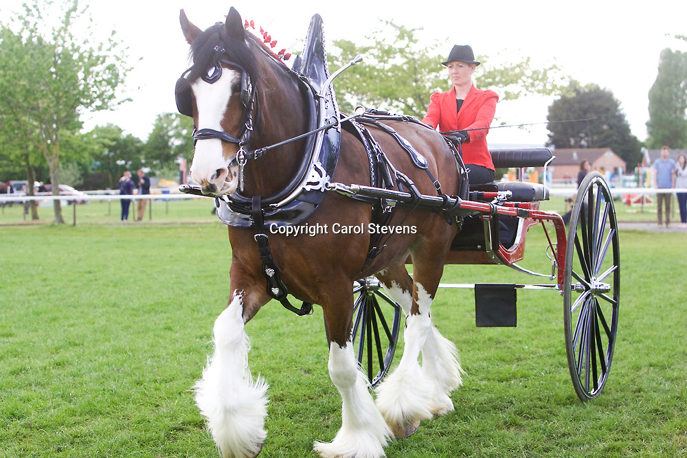 Notts County Show 2017<br />
