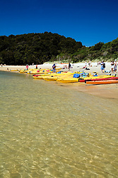 Abel Tasman National Park, New Zealand:  Kayakers gather on the beach at Torrent Bay.