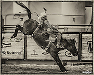 2016 Junior NFR Mini Bareback World Championships