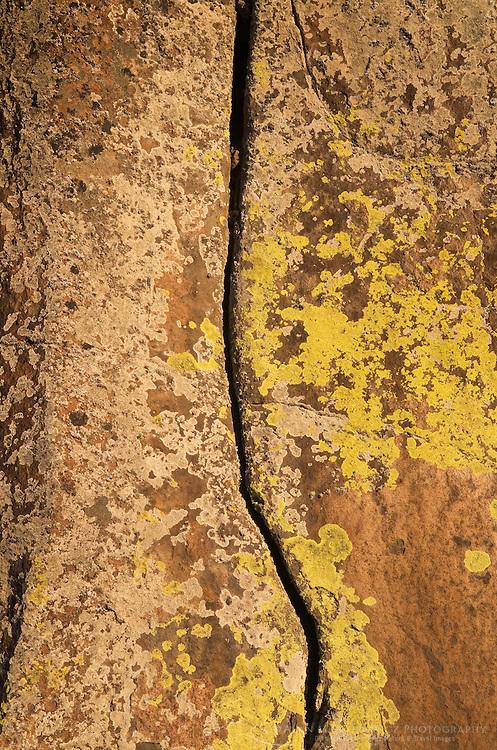 Basalt columns, Sun Lakes-Dry Falls State Park Columbia Plateau Washington