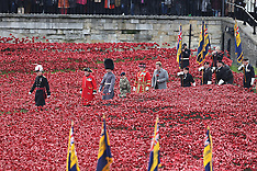 NOV 11 2014 Last poppy planted at Tower of London poppy installation
