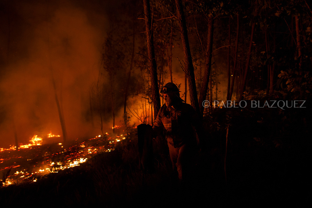 LEIRIA, PORTUGAL - JUNE 19:  A firefighter from the National Republican Guard GIPS try to control a fire in the forest after a wildfire took dozens of lives on June 19, 2017 near Pedrogao Grande, in Leiria district, Portugal. On Saturday night, a forest fire became uncontrollable in the Leiria district, killing at least 62 people and leaving many injured. Some of the victims died inside their cars as they tried to flee the area.  (Photo by Pablo Blazquez Dominguez/Getty Images)