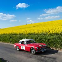 Car 23 Phil Cheek / Chris Rhodes