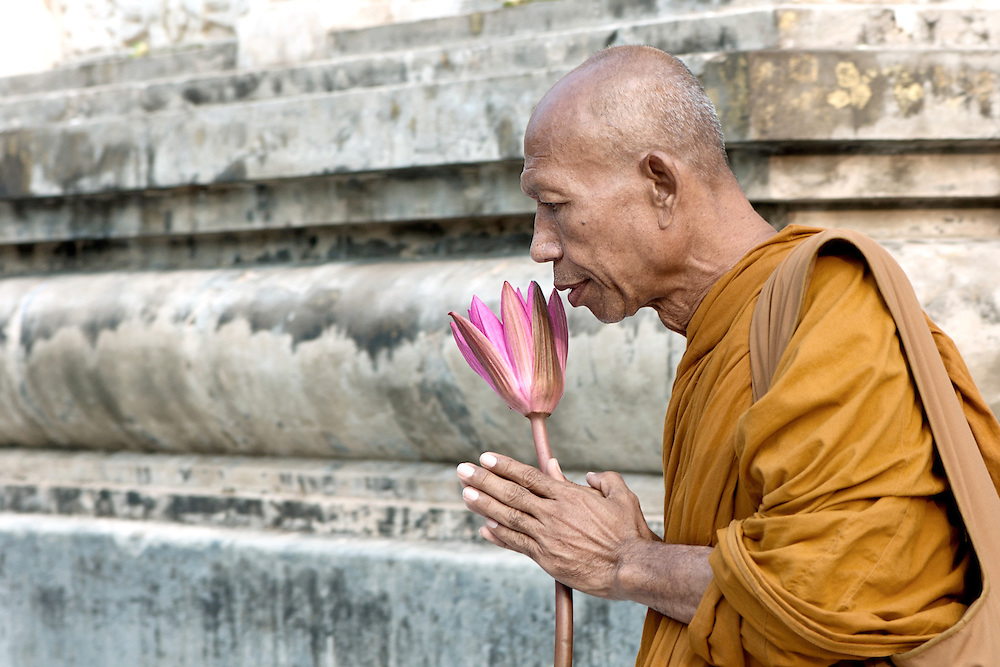 Portrait of a Buddhist monk holding a lotus and doing his prayer