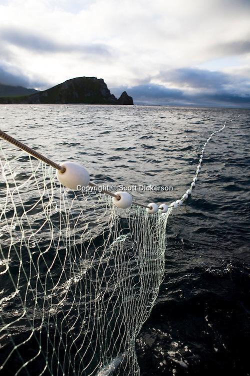 Commercial sockeye salmon fishing in the Eastern Aleutian Islands, area M, region aboard the F/V Lucky Dove.