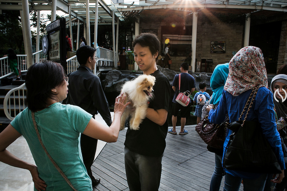 JAKARTA - INDONESIA; SATURDAY, SEPTEMBER 13, 2014; INDONESIA ECONOMIC RISING: Puppies lovers gather at Central Park Mall, Jakarta, Indonesia in weekend Saturday, September 13, 2014.