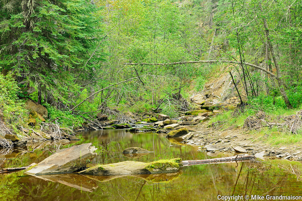 Hard Luck Canyon <br />Whitecourt<br />Alberta<br />Canada