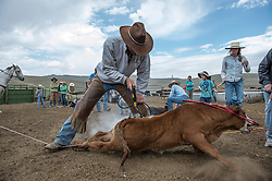"Ranchers from all across the Centennial Valley help J Bar L ranch brand young calves in August 2012. Branding is especially important in Western states, where grazing of public lands is vital to raising cattle. Cattle can easily wander or get mixed with other herds and being able to identify an animal's owner by a brand is critically important. ??Mark Boone, president of the Montana Cattlemen's Association, says the more environmentally focused philosophy used at J Bar L Ranch, first enshrined by Zimbabwean biologist Allan Savory, has seen a ""steady increase"" among Montana ranchers, especially with the newer generation, college-educated ones looking for ways to improve range productivity. ??Boone, who manages the VX Ranch, has read Savory's book himself, and his sense is that ranchers ""use what fits"" their operation. ""I haven't heard, 'It didn't work out',"" he adds, but ranchers do have to ""tweak"" things when Mother Nature ""throws curve balls."" This year, he notes, ""drought has changed grazing plans entirely, with some shipping cattle to other states."""
