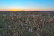Tall Grass Prairie Sunset<br /> Tall Grass Prairie Preserve, Kansas