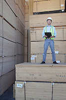 Portrait of a worker standing on stack of plywood