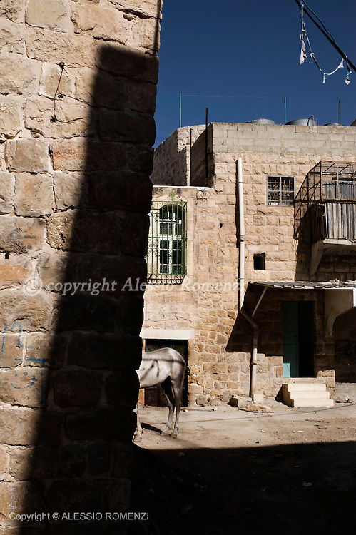 Hebron landscape on January 15, 2010.© ALESSIO ROMENZI
