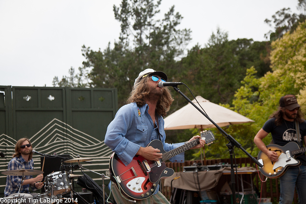 The Blank Tapes at Huichica Music Festival 2014 held at Gunlach Bundschu Winery in Sonoma, CA. Photo © Tim LaBarge 2014