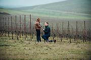 Tom & Meghan Engagement Portraits