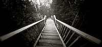 PL07607-00...MINNESOTA - Pinhole image of a stair way along the Superior Hiking Trail.