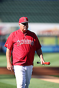 ANAHEIM, CA - AUGUST 29:  Mike Scioscia #14 of the Los Angeles Angels of Anaheim looks on during batting practice before the game against the Oakland Athletics at Angel Stadium on Saturday, August 30, 2014 in Anaheim, California. The Angels won the game in a 2-0 shutout. (Photo by Paul Spinelli/MLB Photos via Getty Images) *** Local Caption *** Mike Scioscia