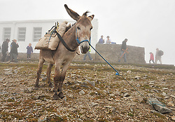 The summit of Croagh Patrick was quieter after the cancellation of the Reek Sunday Pilgrimage early on sunday morning.<br /> Pic Conor McKeown