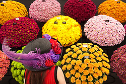 ***LNP HIGHLIGHTS OF THE WEEK ***  © Licensed to London News Pictures. 19/05/2014. London, England. A woman with a floral hat poses in front of a stand with chrysanthemums. Press Day at the RHS Chelsea Flower Show. On Tuesday, 20 May 2014 the flower show will open its doors to the public.  Photo credit: Bettina Strenske/LNP