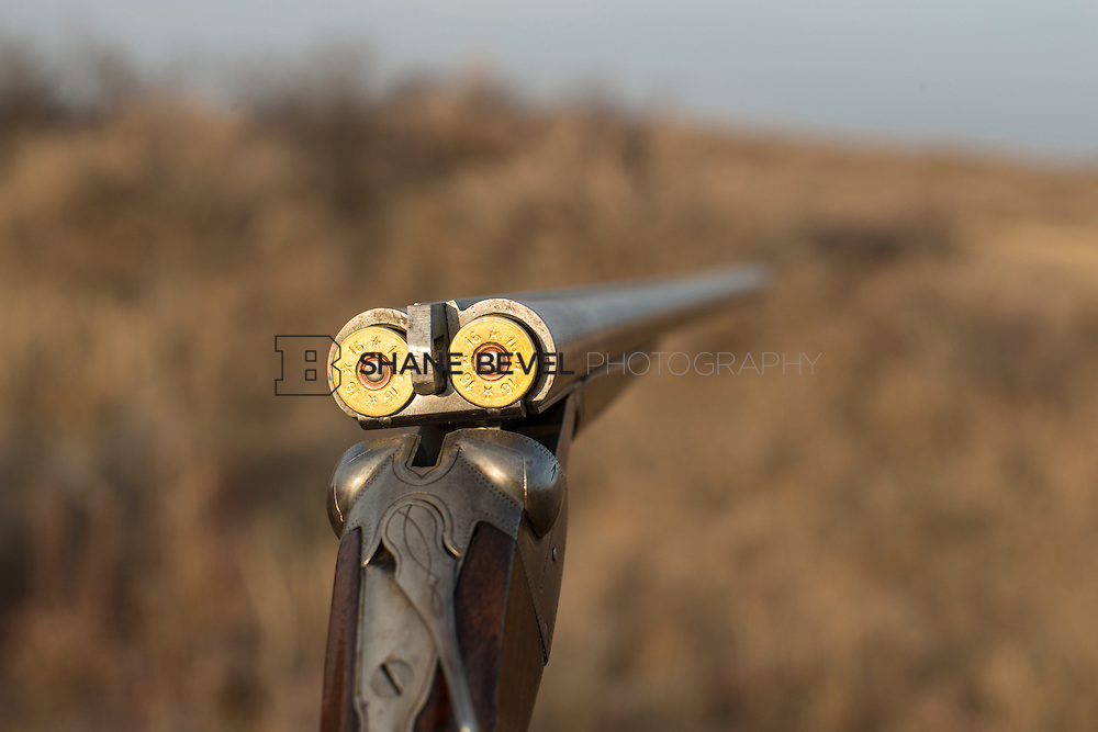 12/8/12 5:26:44 PM -- Quail hunting on the Cimarron Hills WMA in western Oklahoma. <br /> <br /> Photo by Shane Bevel