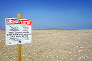 A sign warning that nesting birds are protected at Oregon Inlet on the Outer Banks.