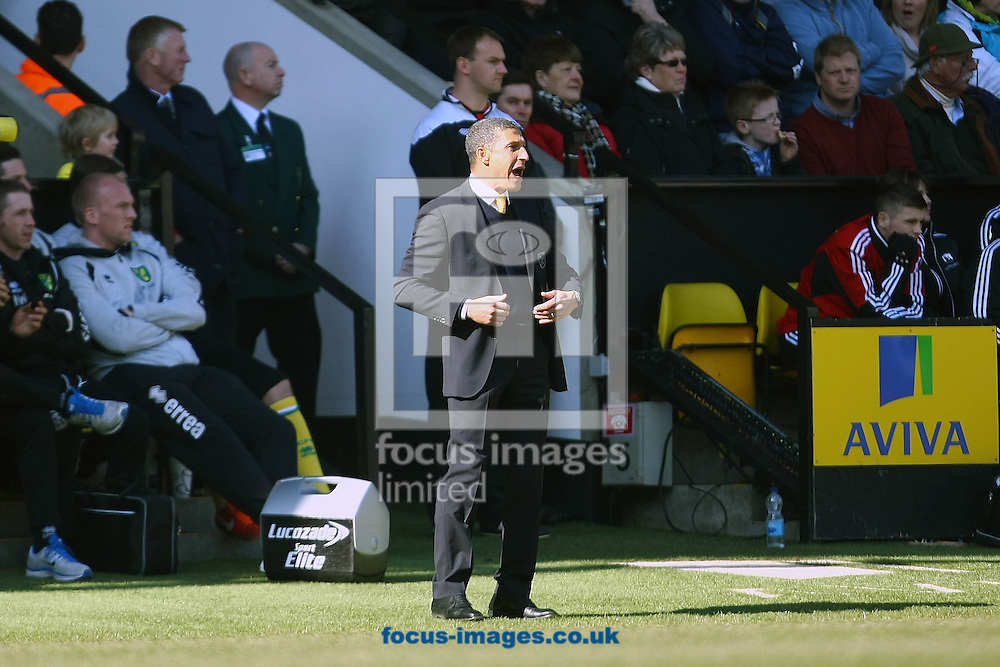Picture by Paul Chesterton/Focus Images Ltd +44 7904 640267.06/04/2013.Norwich Manager Chris Hughton during the Barclays Premier League match at Carrow Road, Norwich.