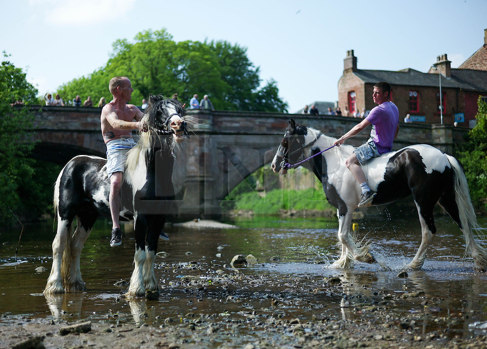 © Licensed to London News Pictures. 06/06/2013<br /> <br /> Appleby, Cumbria, United Kingdom.<br /> <br /> The traditional washing and grooming of horses in the River Eden takes place as gypsies and travellers gather during the annual horse fair on 6 June, 2013 in Appleby, Cumbria. The event remains one of the largest and oldest events in Europe and gives the opportunity for travelling communities to meet friends, celebrate their music, their folklore and to buy and sell horses.<br /> <br /> The five day event has existed under the protection of a charter granted by King James II in 1685 and it remains the most important event in the gypsy and traveller calendar.<br /> <br /> Photo credit : Ian Forsyth/LNP