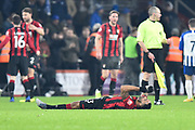 Callum Wilson (13) of AFC Bournemouth lies on the ground to celebrates the 3-1 win at full time during the Premier League match between Bournemouth and Brighton and Hove Albion at the Vitality Stadium, Bournemouth, England on 21 January 2020.