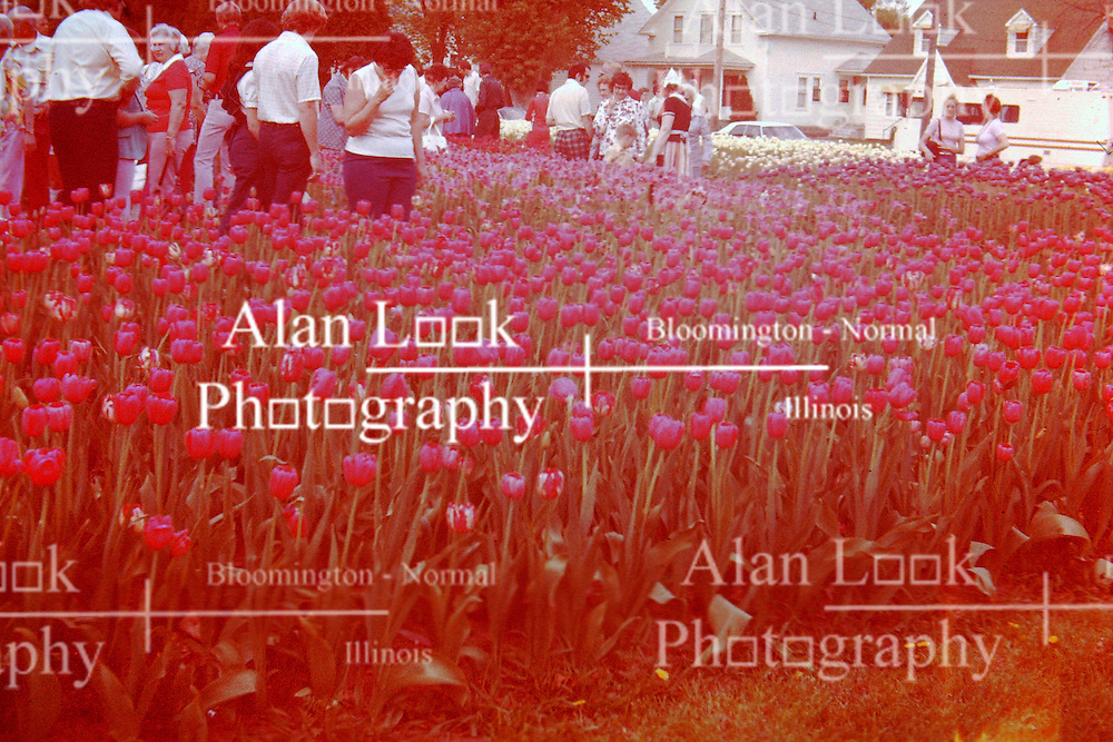 1976 Marion County Iowa Tulip Festival<br />  Photos taken by George Look.  Image started as a color slide.