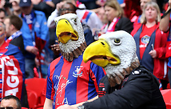 Crystal Palace fans dressed as Eagles at Wembley for the FA Cup Final - Mandatory by-line: Robbie Stephenson/JMP - 21/05/2016 - FOOTBALL - Wembley Stadium - London, England - Crystal Palace v Manchester United - The Emirates FA Cup Final