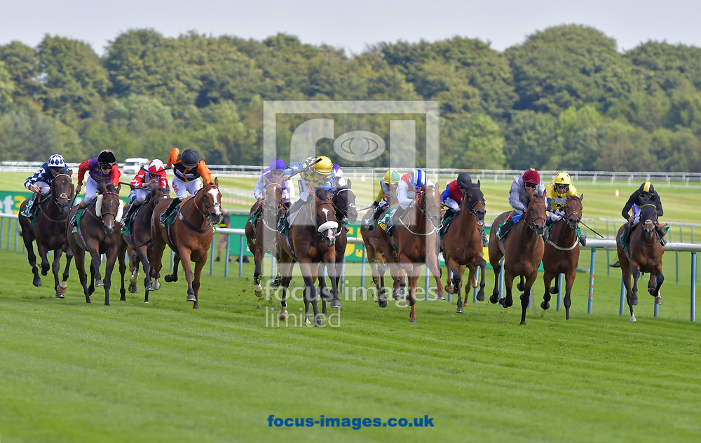 Dylan Mouth ridden by Harry Bentley (blue with yellow cap and stars on sleeves) wins bet365 Old Newton Cup handicap Stakes during the bet365 Old Newton Cup Day meeting at Haydock Park, Merseyside<br /> Picture by Martin Lynch/Focus Images Ltd 07501333150<br /> 08/07/2017