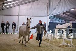 Chardon Bram, NED<br /> Jumping Mechelen 2019<br /> © Hippo Foto - Dirk Caremans<br />  28/12/2019