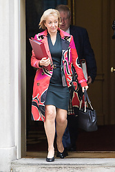 Downing Street, London, October 25th 2016. Environment, food and Rural Affairs Secretary Andrea Leadsom leaves10 Downing Street following the weekly cabinet meeting and the announcement that the construction of a third runway at Heathrow Airport has initial government approval.
