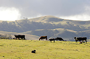 "USA ""Pastures of Heaven, Salinas, CA"" Jay Dunn"