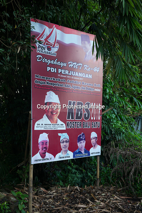 Political poster - Bali revisited February 2017