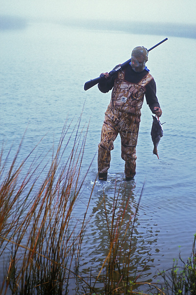 Stock photo of a man wading out of a pond with a freshly killed duck