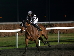 Samphire Coast ridden by Paddy Mathers wins the 32Red Handicap stakes at Kempton Park Racecourse, Esher.
