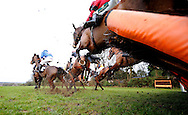 Plumpton, UK, 16th January 2017<br /> Race winner Kings Walk ridden by Paddy Brennan (Blue Silks) clear a early hurdle during the EPDS Racing Welfare BTO Series 2017 Maiden Hurdle at Plumpton Racecourse.<br /> &copy; Telephoto Images / Alamy Live News