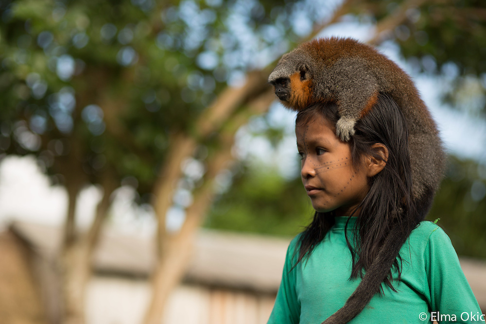 People of the forest often have forest pets. Sawre Muybu, a Munduruku indigenous village on the Tapajos River, Para, Brazil.
