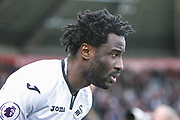 Wilfried Bony of Swansea City before the Premier League match between Swansea City and Watford at the Liberty Stadium, Swansea, Wales on 23 September 2017. Photo by Andrew Lewis.