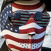 Veteran and 9-11 Firefighter wearing American flag mask at Veteran Day Parade.<br /> <br /> The sole purpose of the  parade is to honor the service of our veterans and to salute our currently serving military.