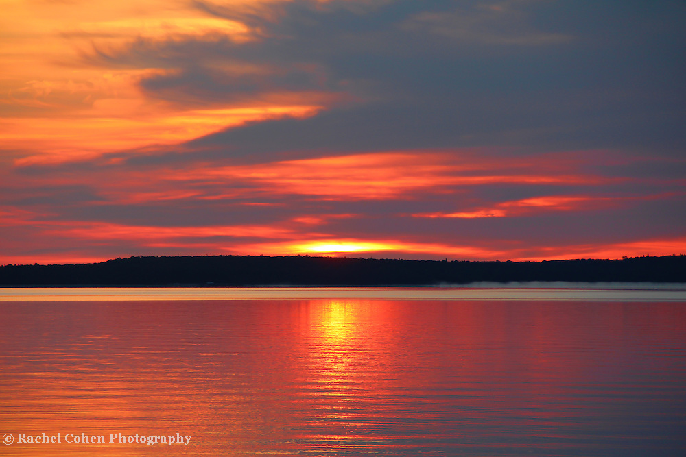 &quot;Shimmer&quot;<br />