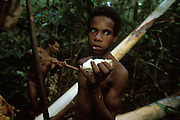A Kombai boy eats fresh marrow from a palm tree in Papua, Indonesia. September 2000. In the background a man cuts more marrow from the tree with a stone axe. The Kombai are a so-called treehouse people who build their homes high up in the trees.